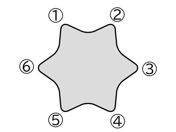 トルクスの形状